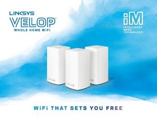 【迷你版 Velop】高度縮減兩英吋擺放更靈活 Linksys 發佈 Velop Dual-Band Mesh WiFi 系統